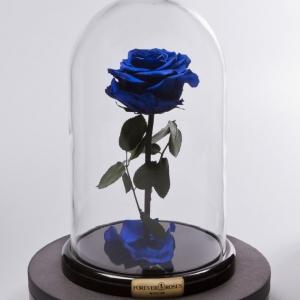 Синяя неувядающая роза в стеклянной колбе
