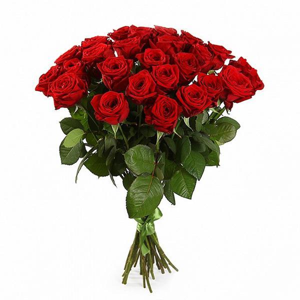 Букет из 35 красных импортных роз