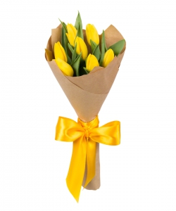 Семь желтых тюльпанов