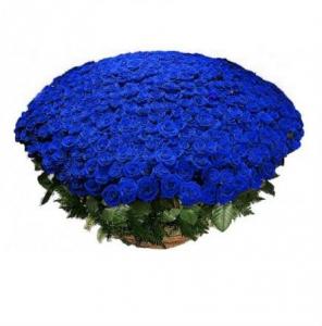 1001 синяя роза в корзине