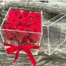 Розы в боксе из оргстекла