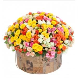 Огромная коробка с кустовой розой