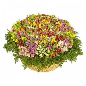 Корзина из 1001 разноцветного тюльпана