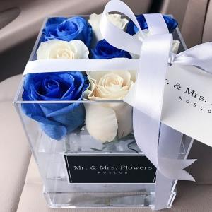 Розы в боксе из оргстекла синие и белые